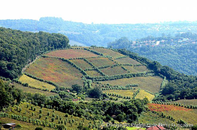 Uma das principais atrações de Bento Gonçalves, no Rio Grande do Sul, é visitar o Vale dos Vinhedos, onde estão concentradas algumas das melhores produtoras de vinho do país