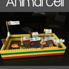 Plant Cell Diagram Project 2 Way Switch Wiring Lego Animal — Homegrown Learners