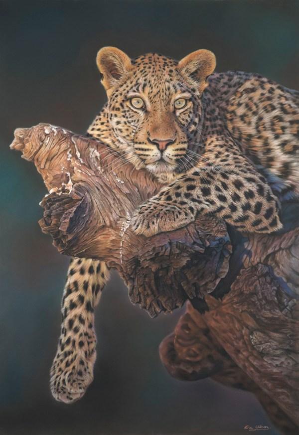 Eric Wilson Wildlife Artist