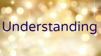 Understanding Understanding Inspiritual