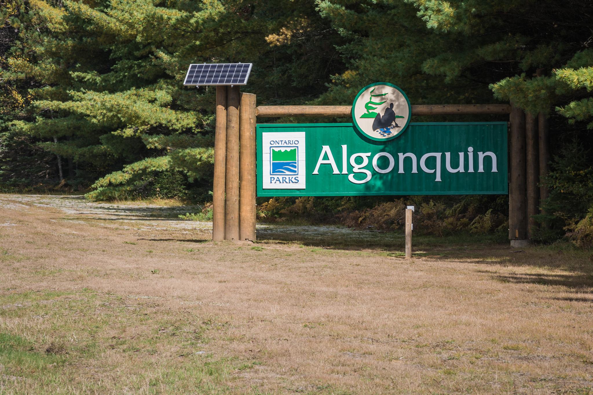 Algonquin Provincial Park (1/125s, f/8, ISO200)