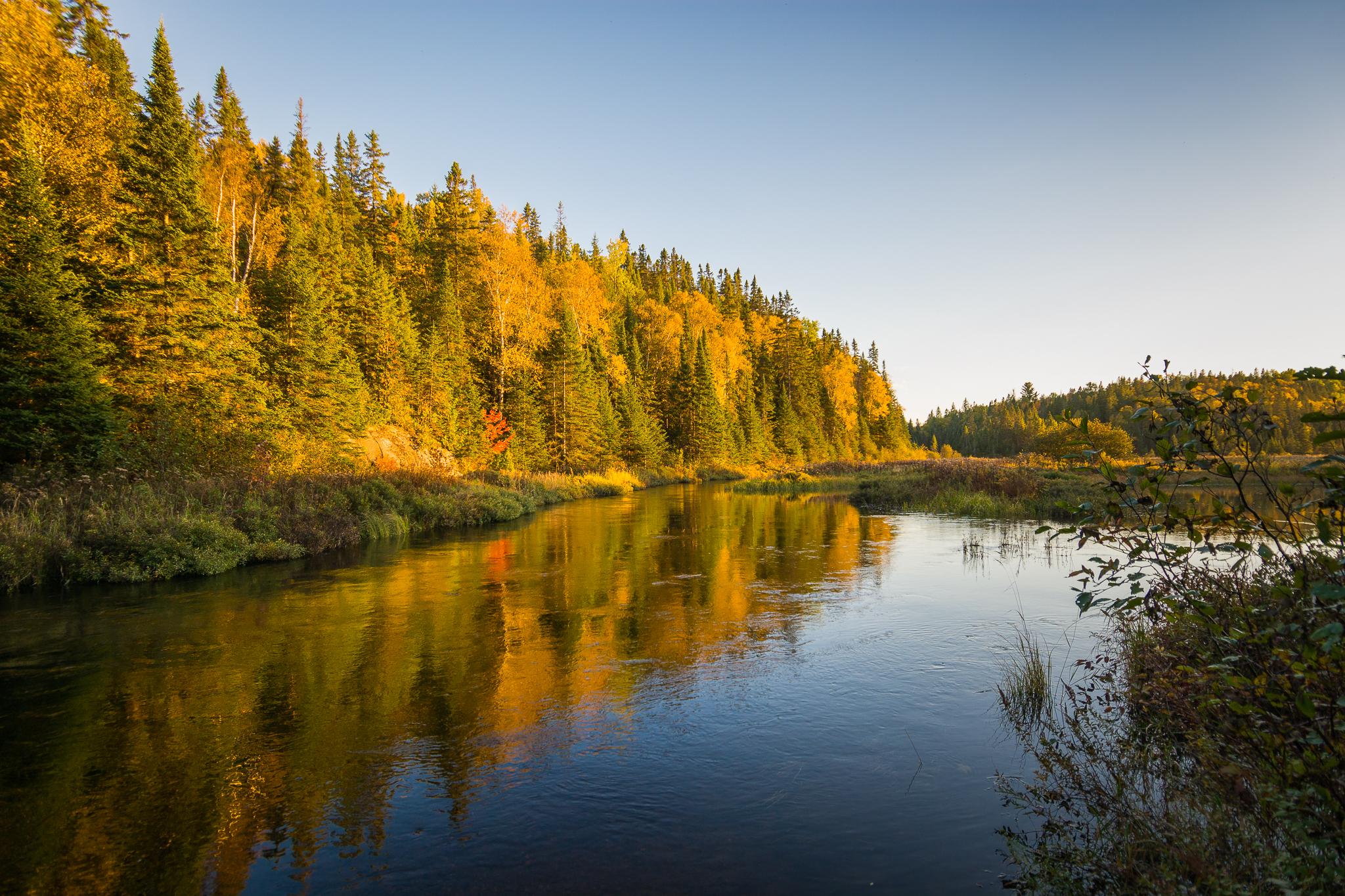 Pond Beside the Old Railway Bike Trail (1/200s, f/4, ISO200)