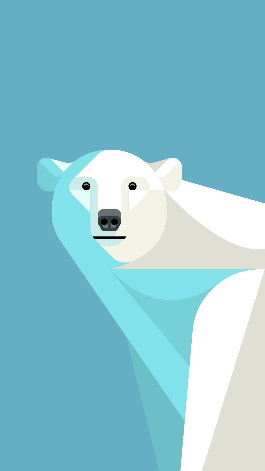 Animal Print Wallpaper Border Josh Brill Polar Bear Portrait