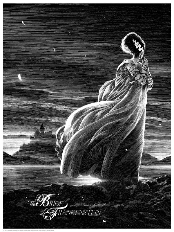 Stunning Horror Art Series Universal Classic