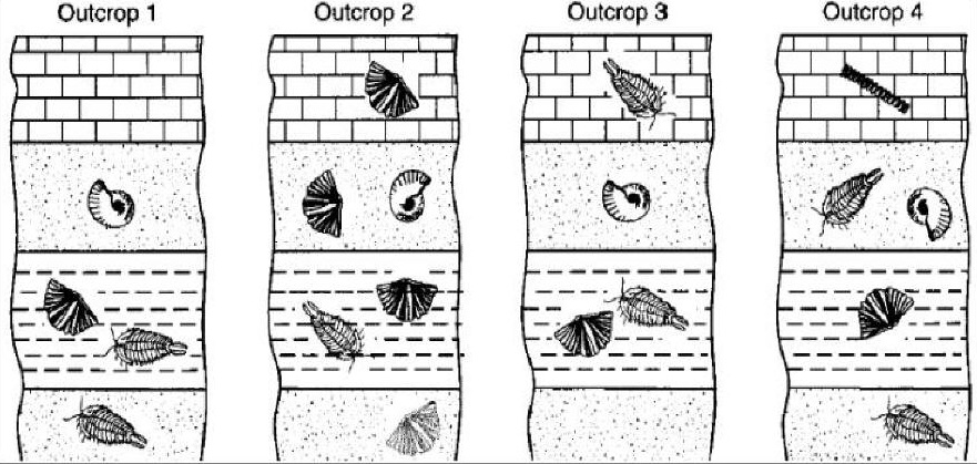 Definition of stratigraphic dating