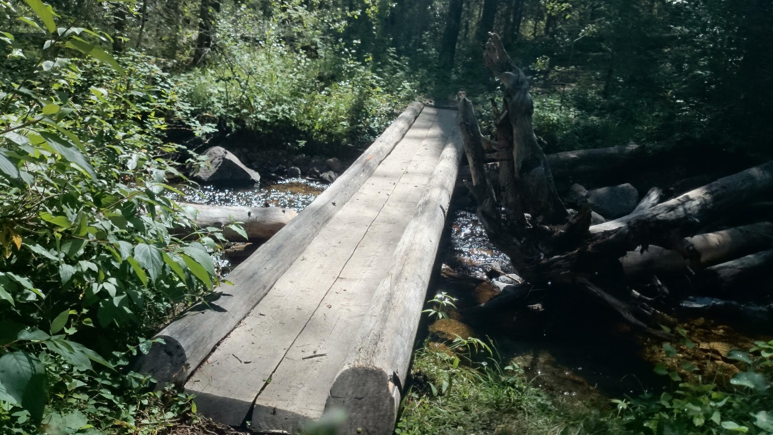 Wooden Bridge over creek near Katrine Lake, Jasper National Park
