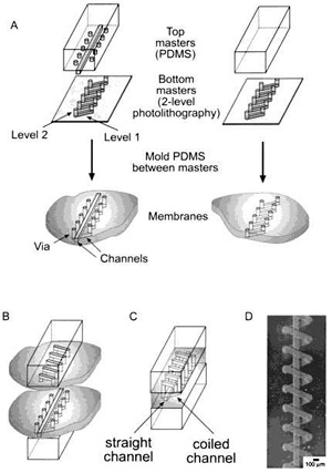PDMS: The Favorite Material of Microfluidics (for now