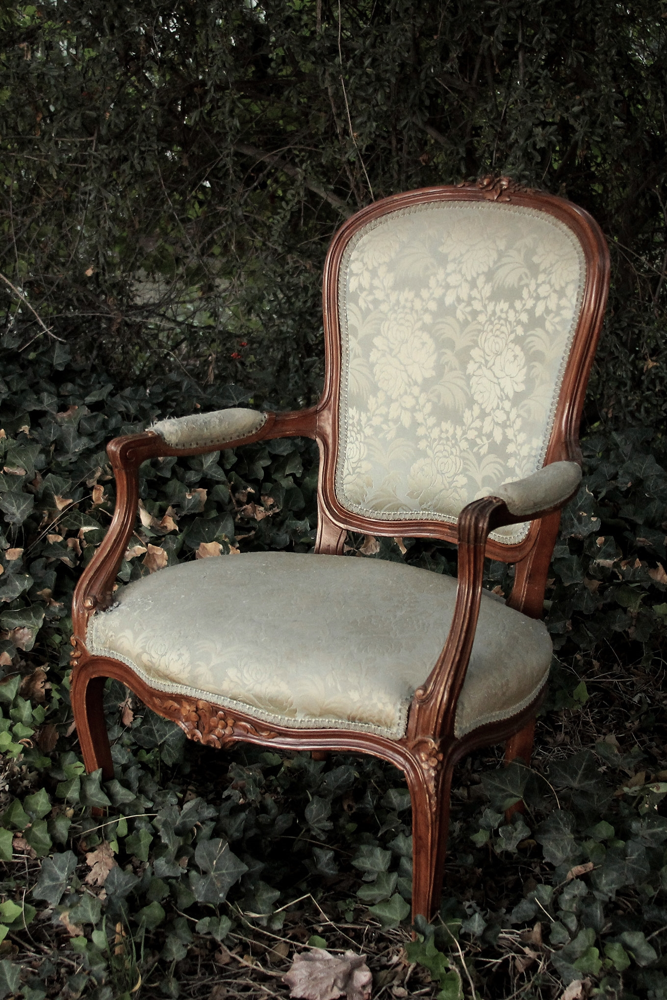 Antique Parlor Chairs American Vintage Rentals Wedding Rentals Furniture Decor