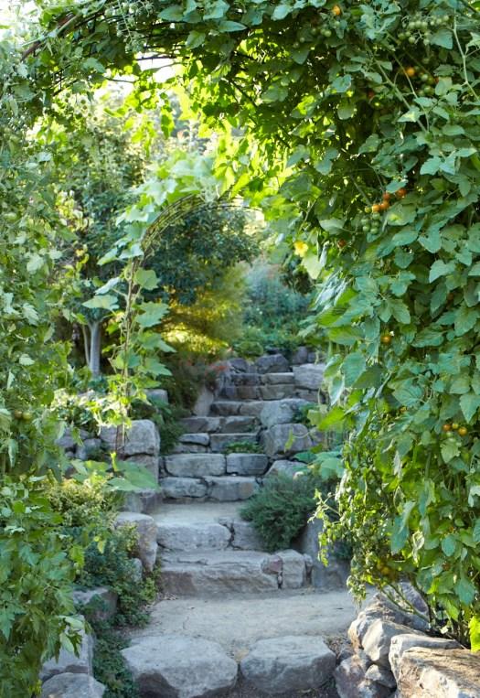Stone steps and trellises