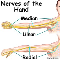 Ulnar Nerve Diagram Simple Switch Wiring Help I Have A Entrapment Musicians Health Collective