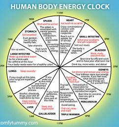 human body energy clock lijiang studio mechanical clock movement diagram body clock diagram [ 900 x 900 Pixel ]
