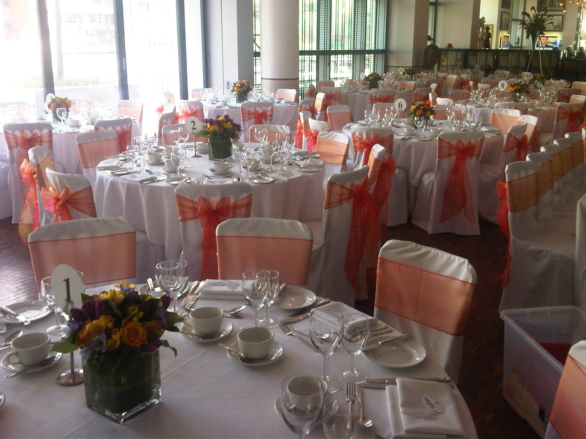 chair covers and sashes hire operating room chairs sash ribbon rose img00848 20120219 1422 jpg