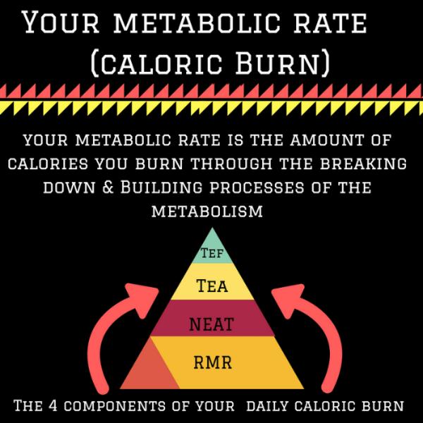 NEAT y calorias gastadas