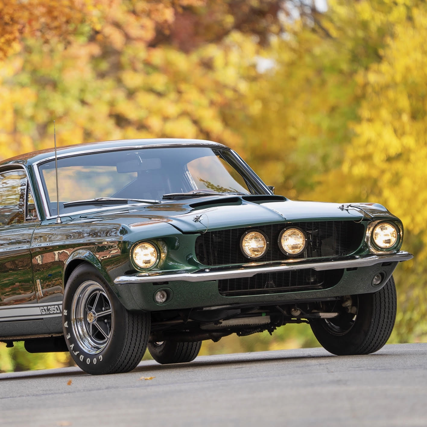 small resolution of 1967 shelby gt350