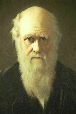 The highest possible stage in moral culture is when we recognize that we ought to control our thoughts.- Charles Darwin Accept all thoughts for what they are but get good at keeping the good ones and making them come true in positive action.