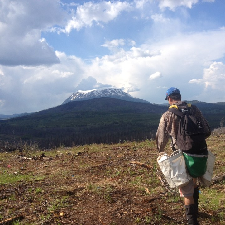 A clear but rocky land near the Nadina volcano