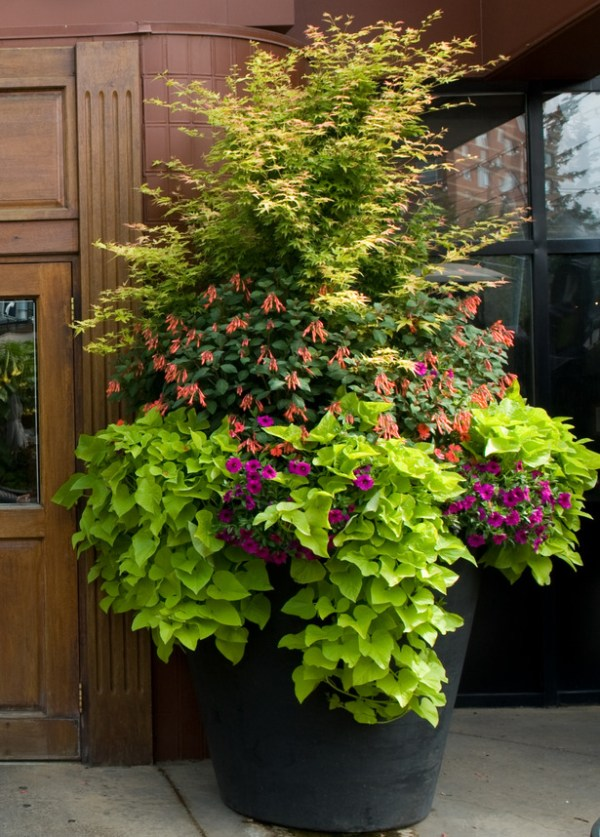 custom business & commercial planters
