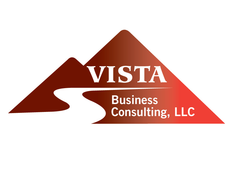 vista business consulting 451