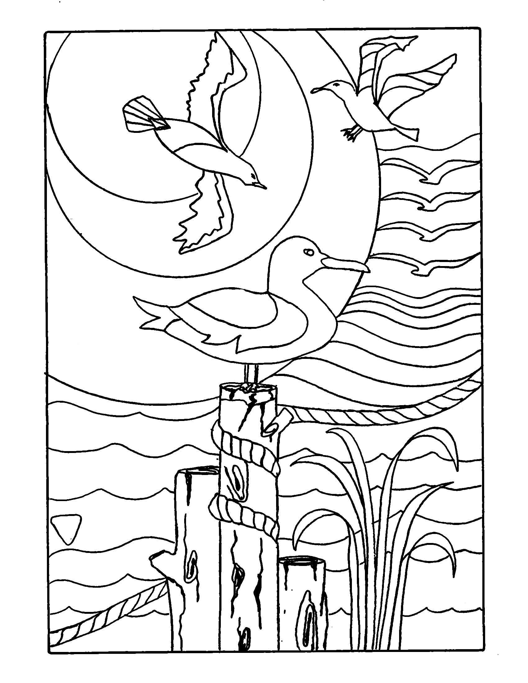 Soothing Seas Coloring Book — Sea Glass Searchers Club
