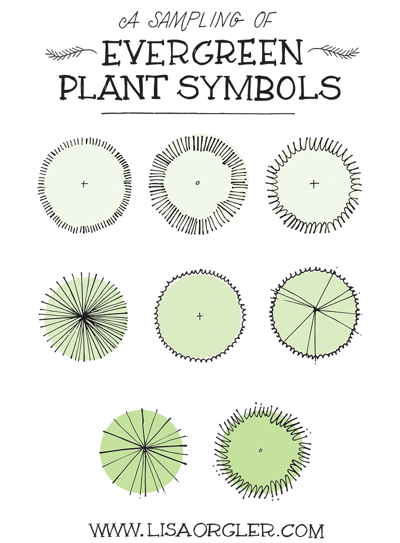 shrub graphic symbols diagram speakon xlr wiring drawing plant practice sheet now let s actually draw these i ve included a with the pencil circles already drawn so all you have to do is whip out your