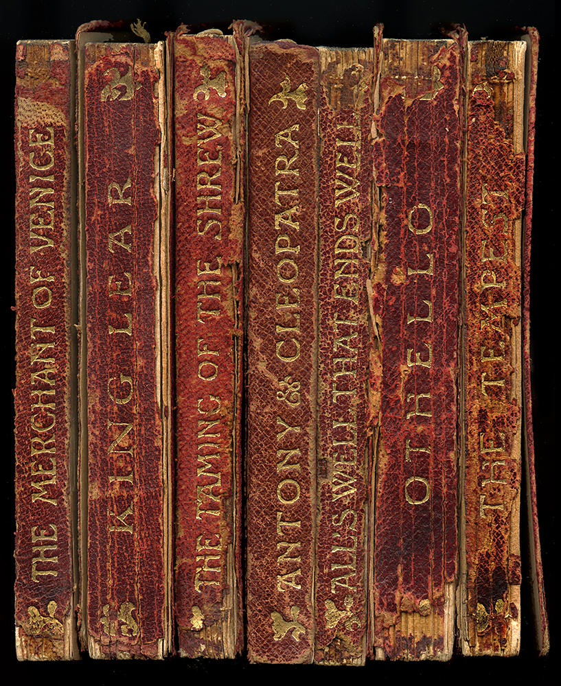 Shakespeare Antique Book Spine Framed  Unique Wall Art