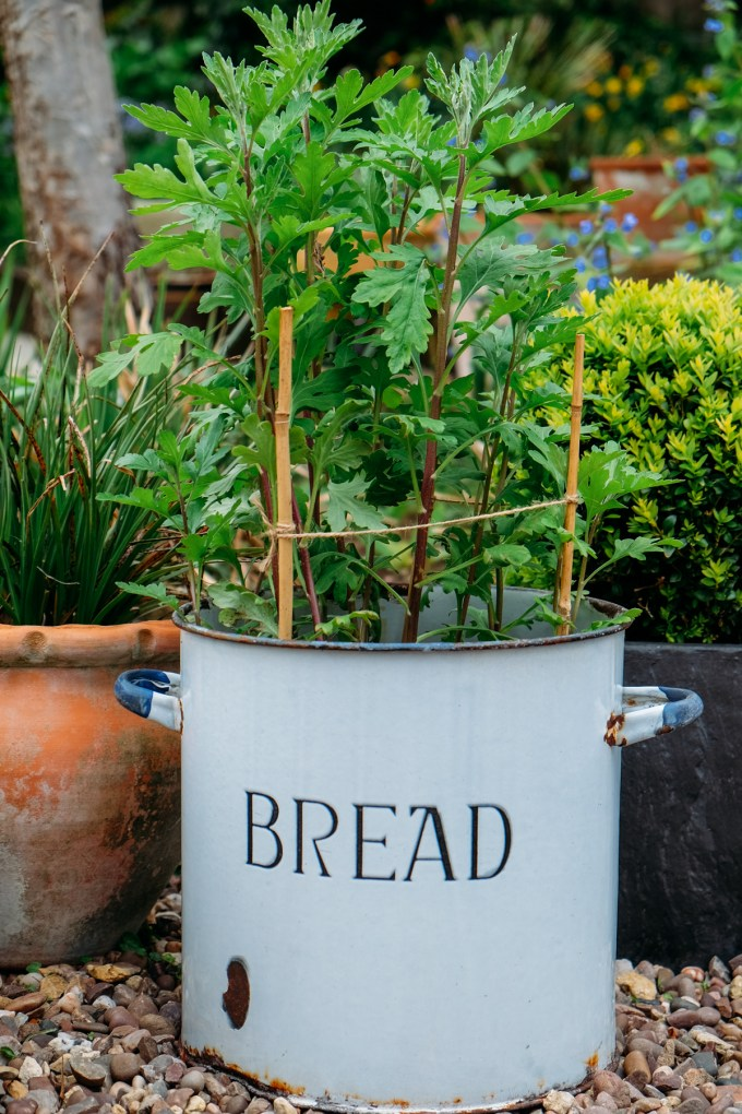 Bread bin- free from car boot sale (due to damaged lip round base)