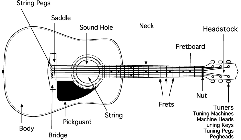guitar parts diagram 1999 ford ranger electrical mark starlin acoustic