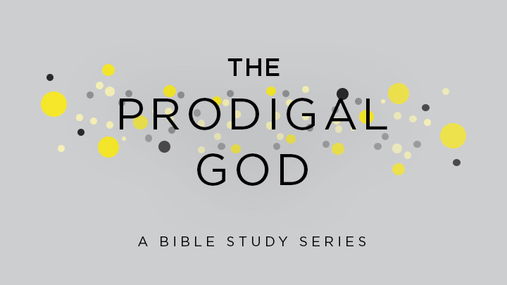 The Prodigal God (Bible Study Series) — Storyline Church