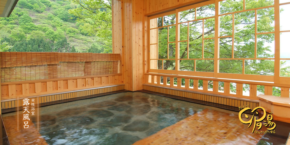 The rotenburo in the female baths at Takahan - http://www.takahan.co.jp/english.html