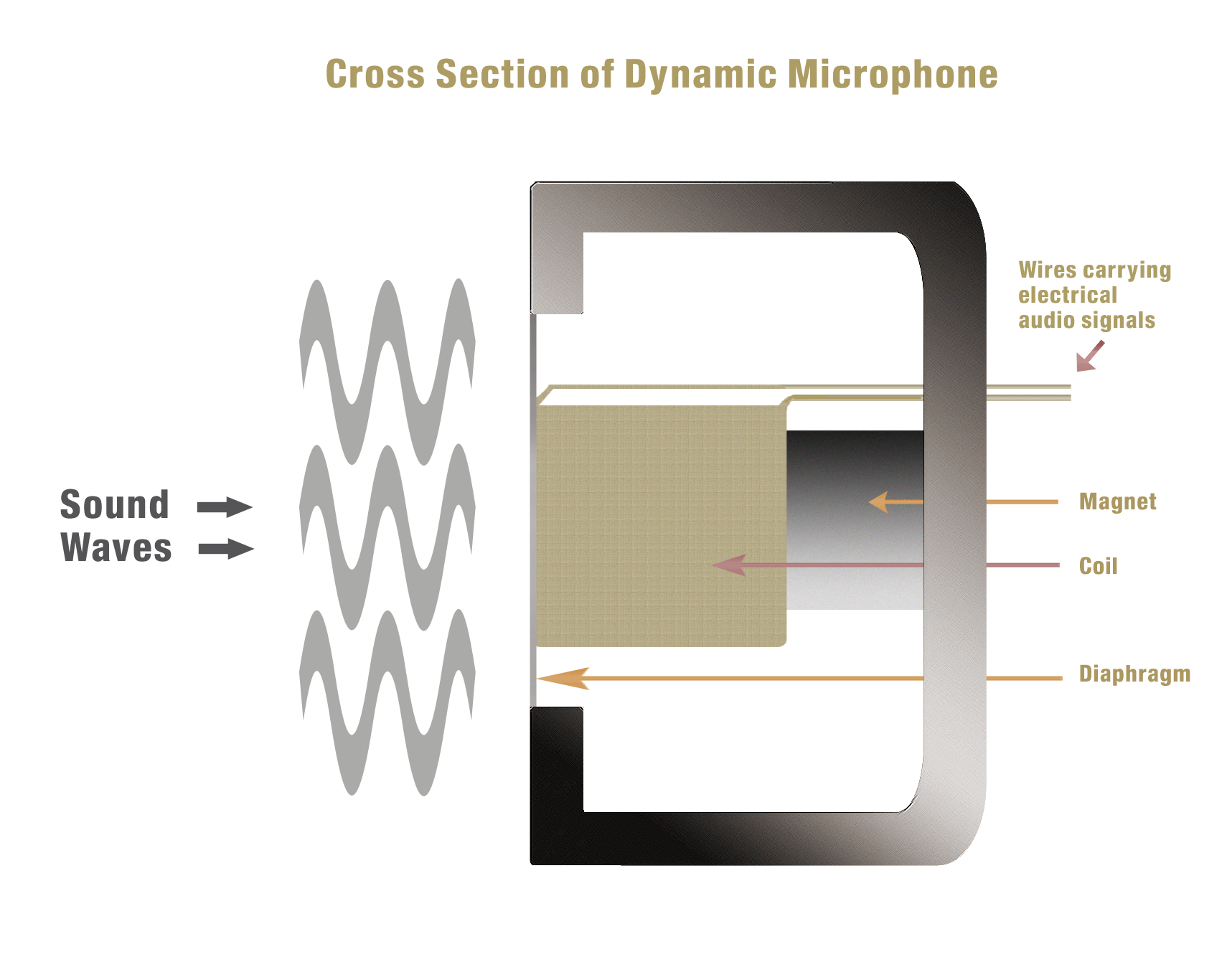 hight resolution of pyramind microphones 101 dynamic voice coil
