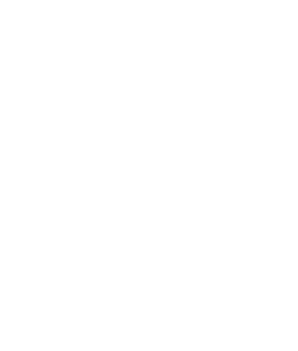 Iron Works Phoenixville