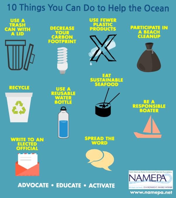 Namepa Education North American Marine Environment