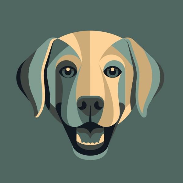 Portrait Illustration Dog