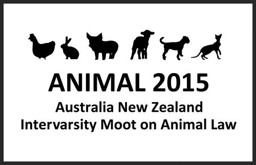 Informative speech on animal cruelty. Animal cruelty