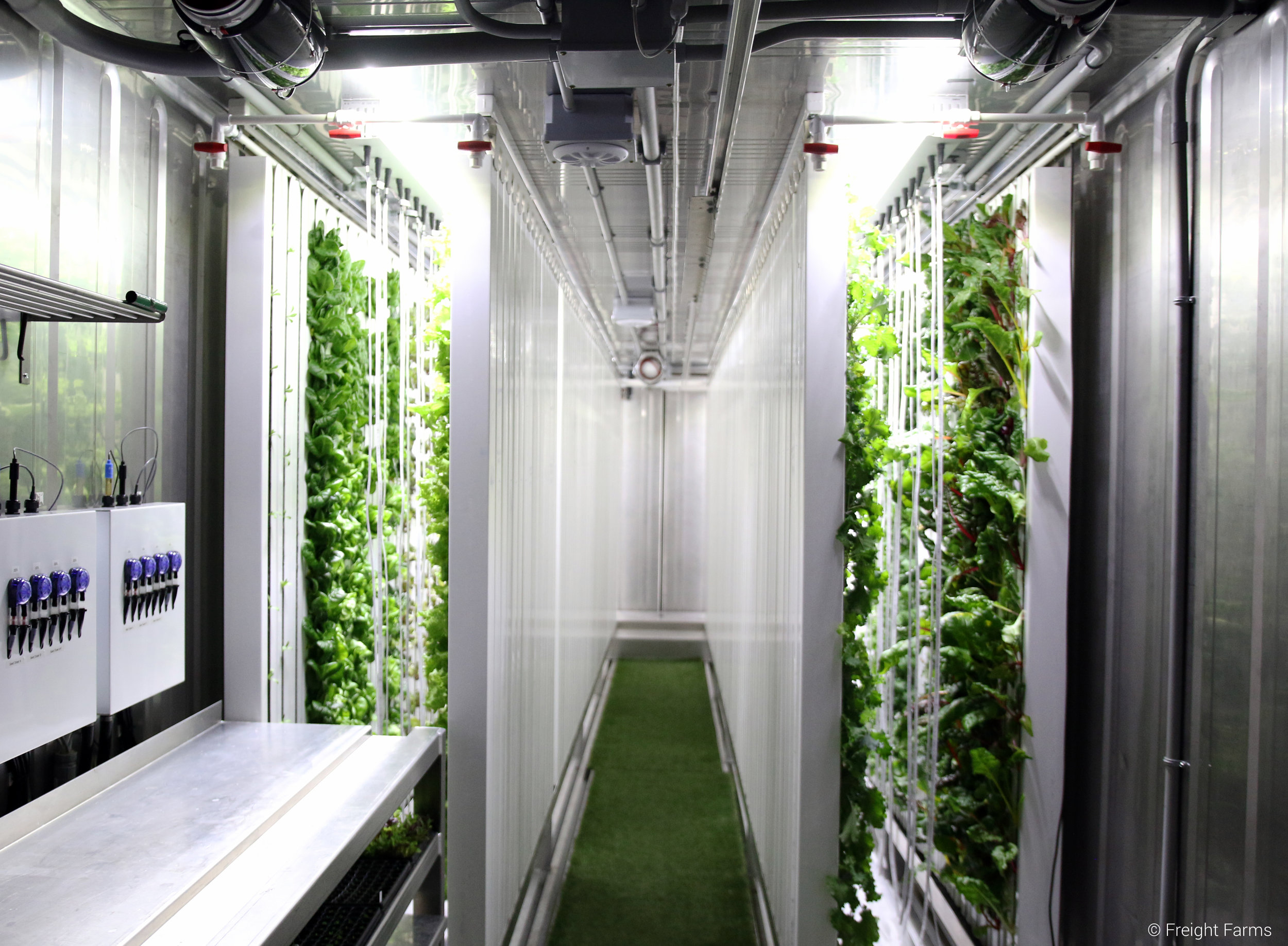 Automated Hydroponic Grow Box