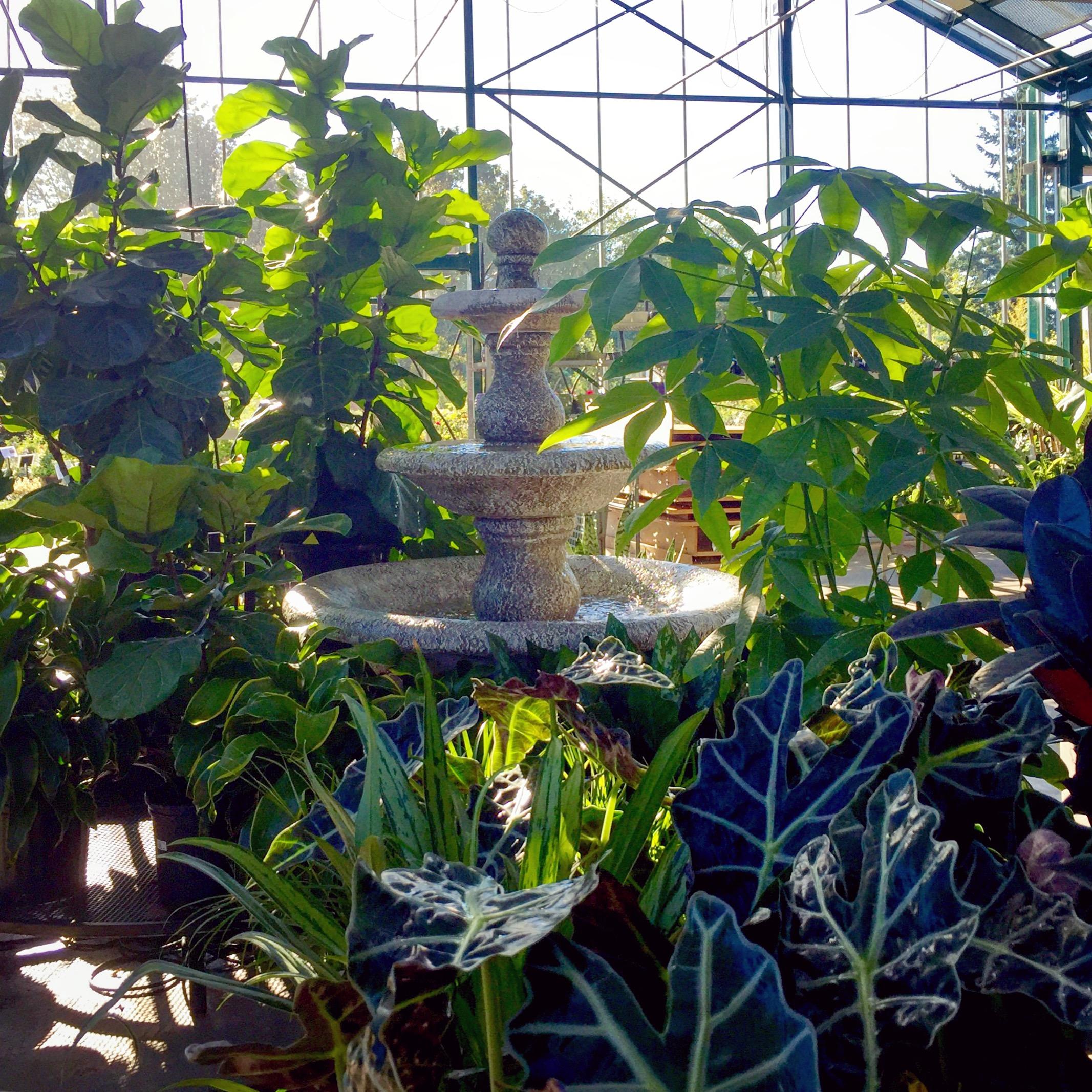 How Does Your Garden Grow? - Project Nursery