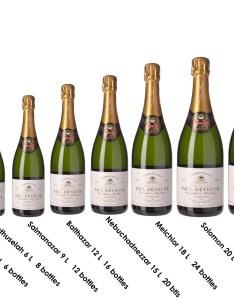 Traditional champagne bottle size chart and measurements demi to melchizedek also rh tenzingws
