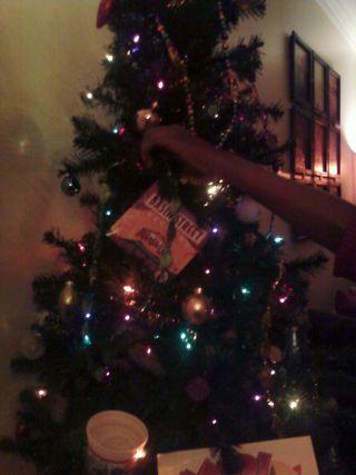 Sheila tree 2