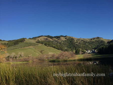 Skywalker-Ranch-road-my-big-fat-cuban-family