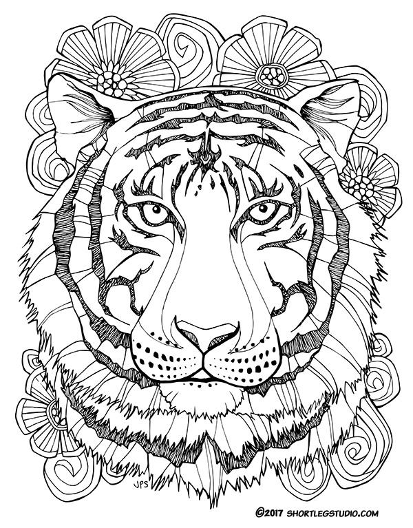 New Tiger Coloring Sheets — Short Leg Studio