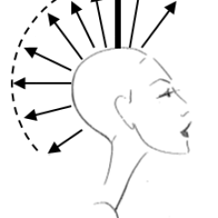 90 Degree Diagram Typical Thoracic Vertebrae Uniform Layer Reflections Training Academy From The Same Guide Cut Ear To At Degrees Following Head Shape This Creates Four Quarters