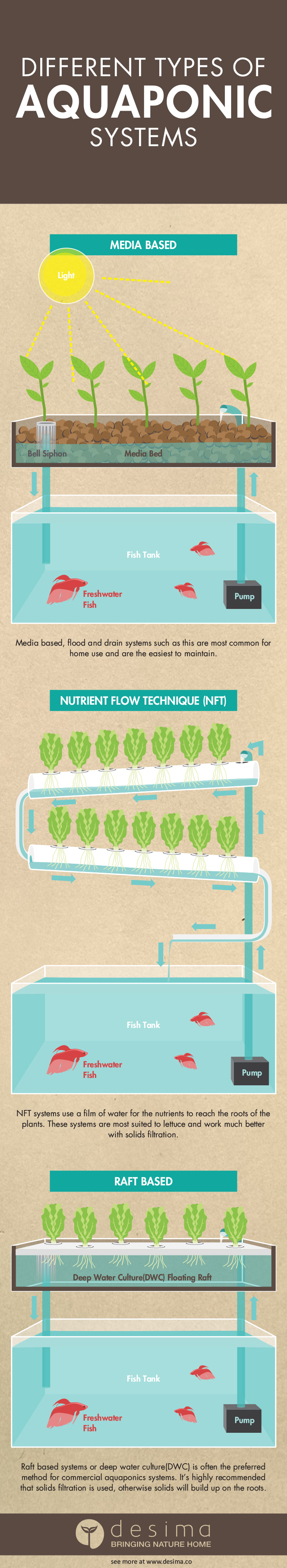 Different types of aquaponic systems  desima