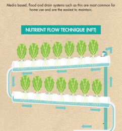 infographic on the different types of aquaponics systems  [ 735 x 4012 Pixel ]