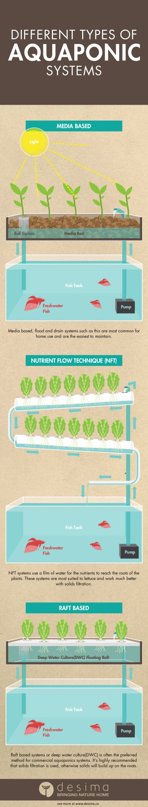 small resolution of infographic on the different types of aquaponics systems