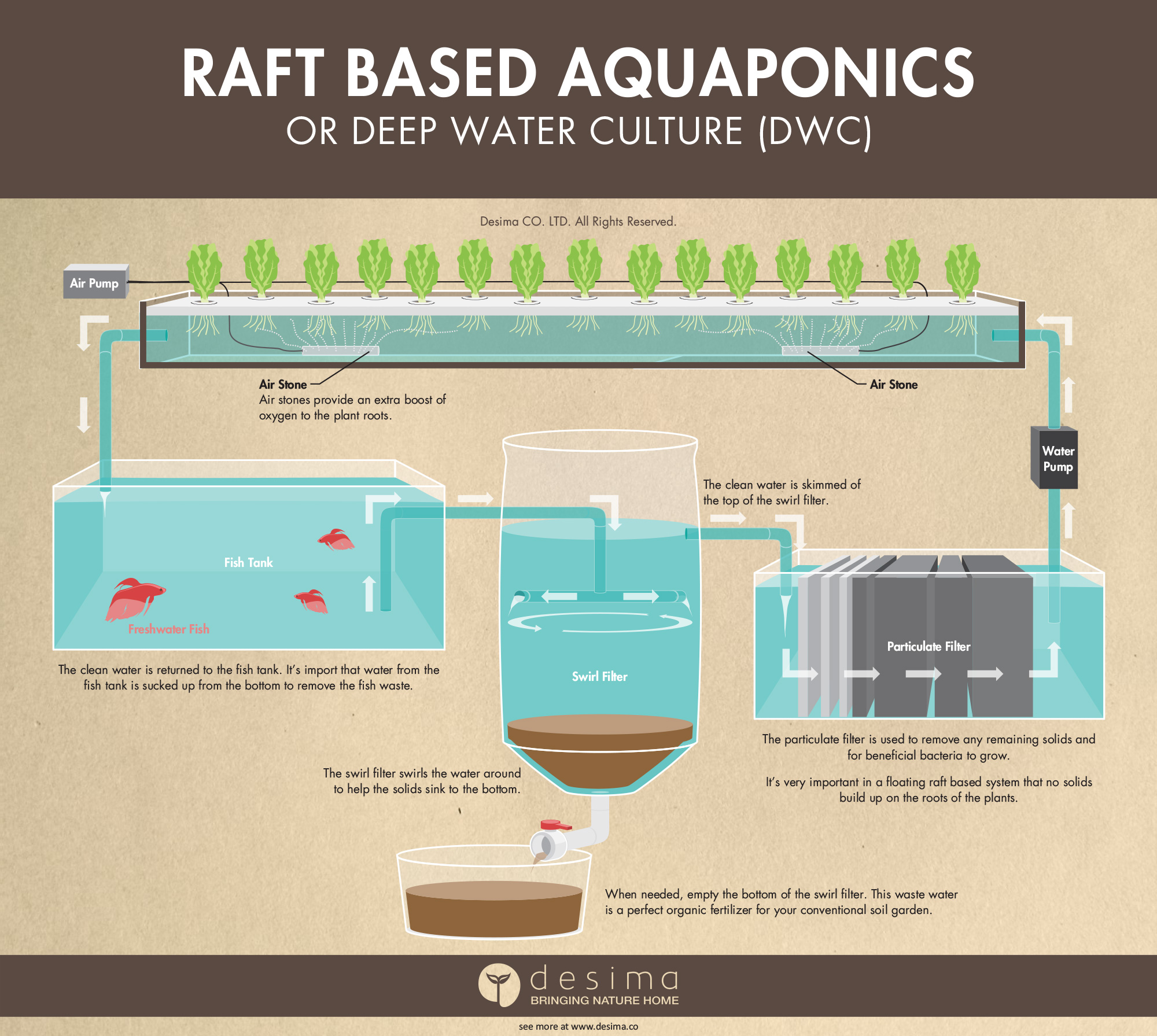 hight resolution of raft based aquaponics or otherwise known as deep water culture dwc infographic