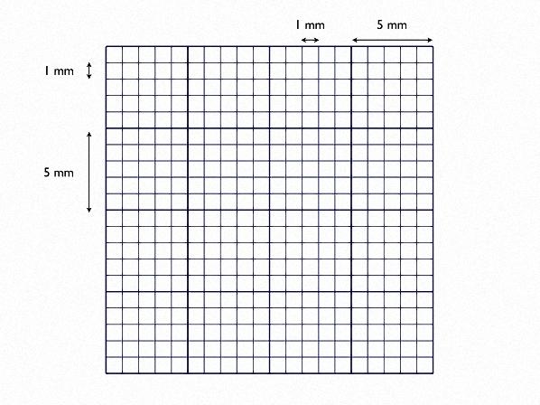 Related Keywords & Suggestions for ekg grid