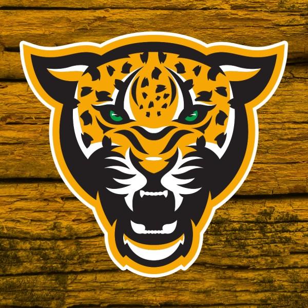 Mascot Sports Logo Design