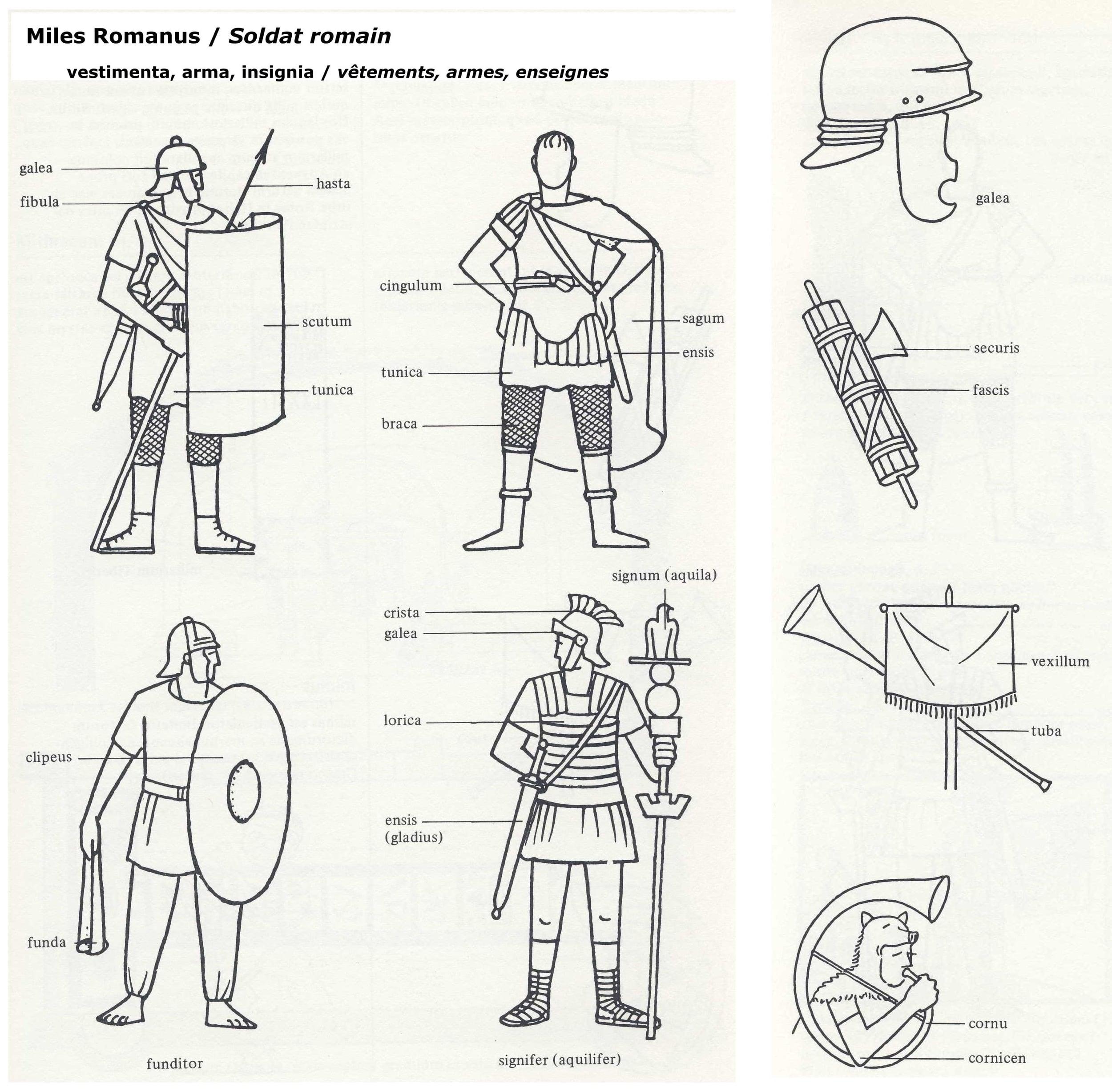 Roman Military — Latin for Rabbits