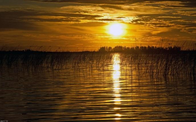 (Créditos: © flickr CC BY 2.0 – Phillip Capper) http://ie1.trivago.com/images/temporaryimages/pressreleases/Lago Ibera.jpg