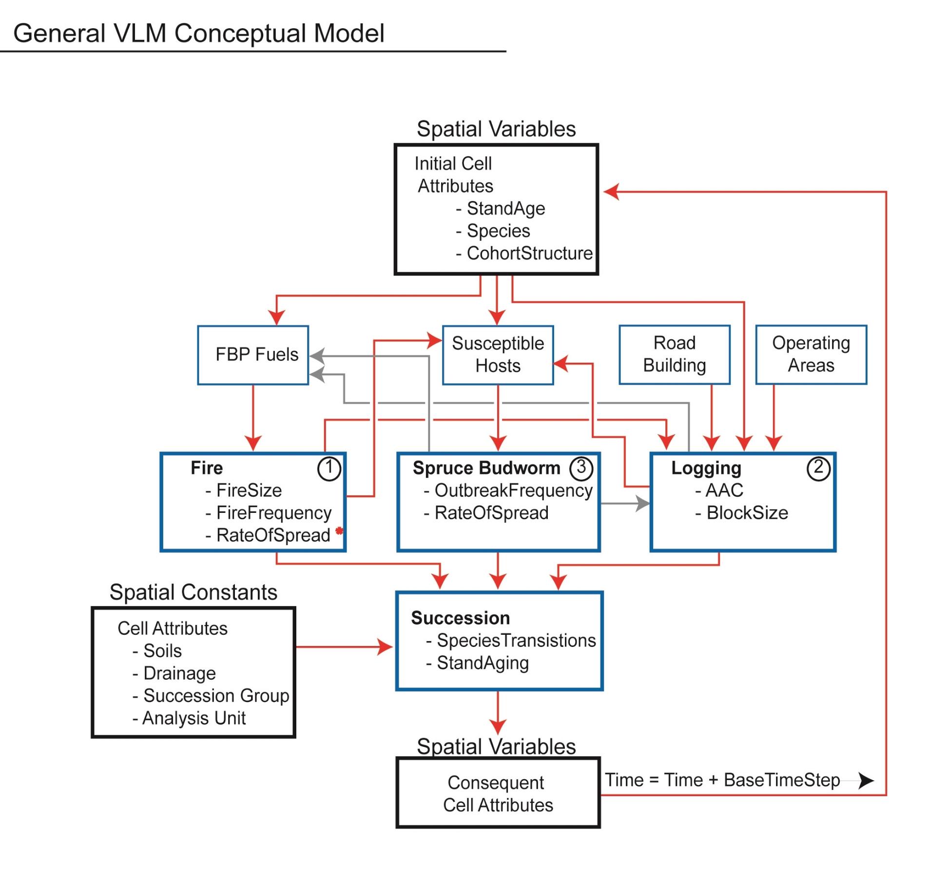 medium resolution of forest ecosystem modelling